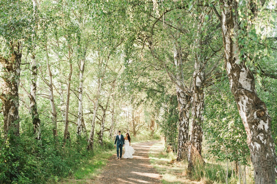 fantasy forest perfect for a wedding photo shoot
