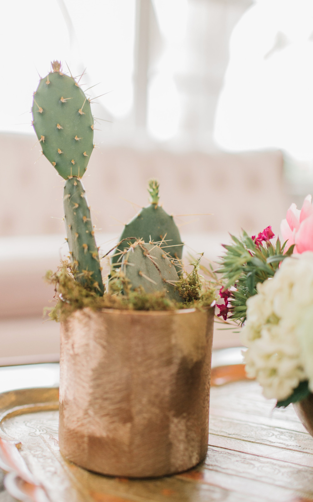 cactus wedding favors
