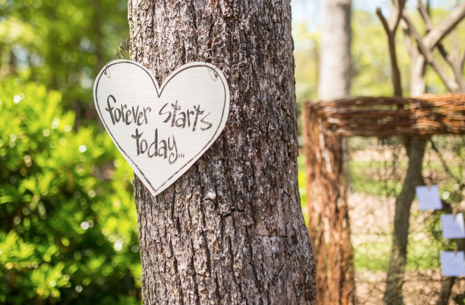 cute forever starts today wedding sign