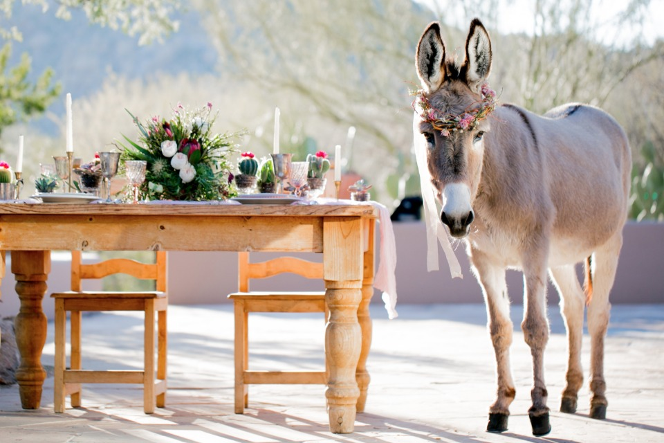 Beer burro and sweetheart table