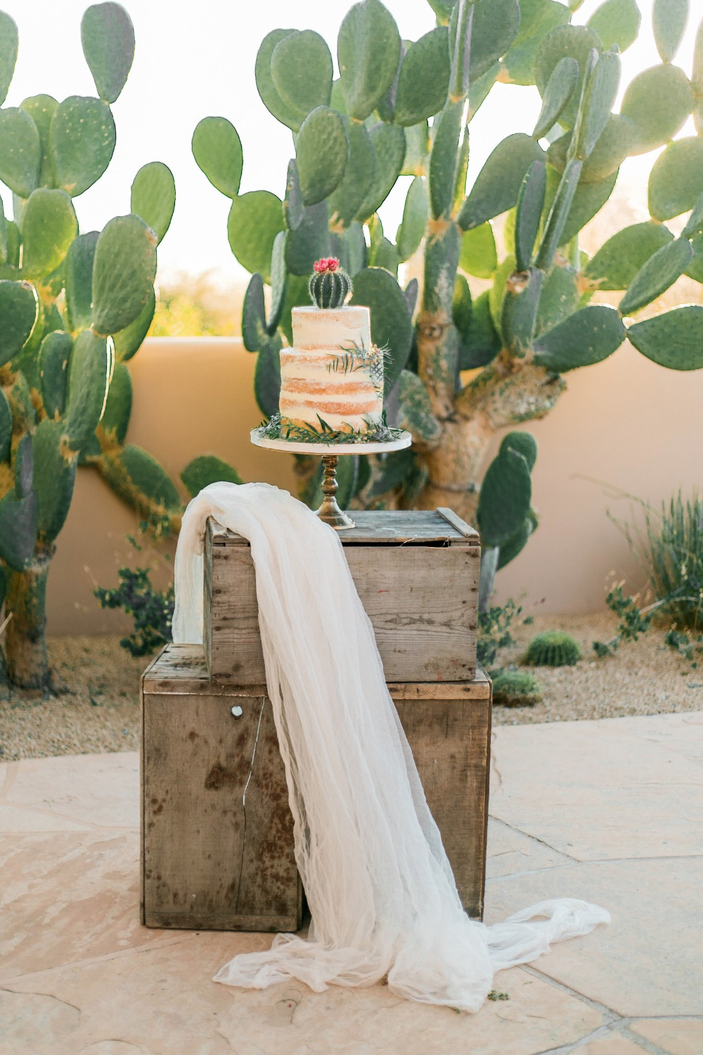 rustic desert style cake table