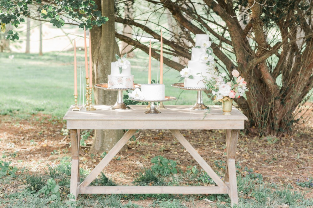 Rustic chic cake table