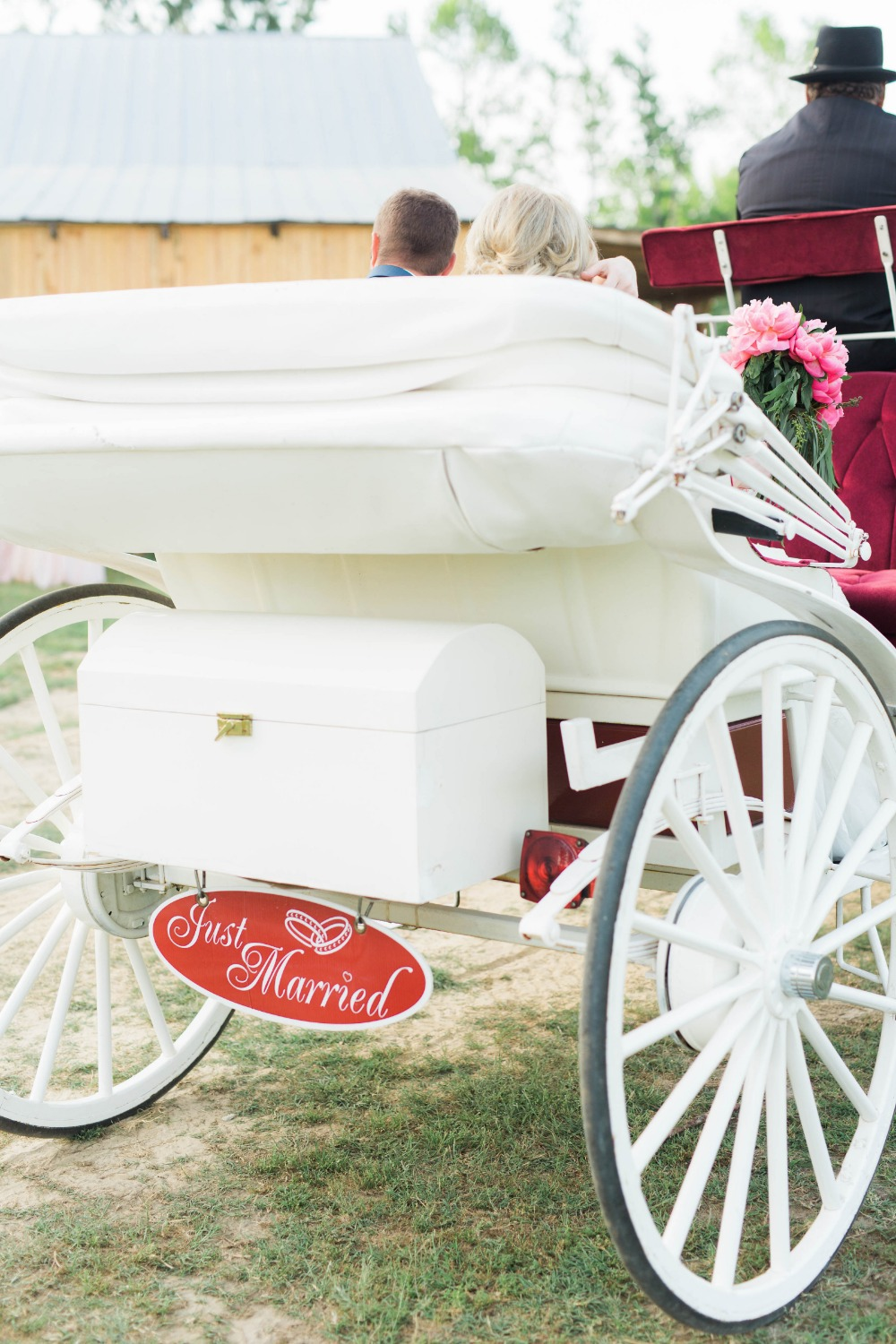 Just married carriage sign