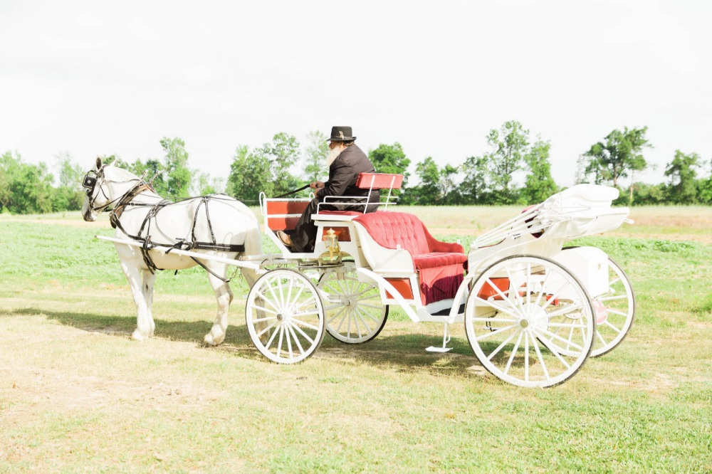 Farm wedding carriage