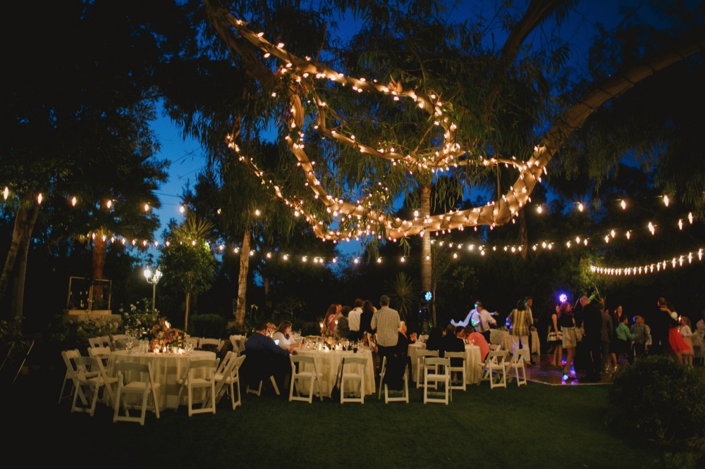 Outdoor twinkle lights decor