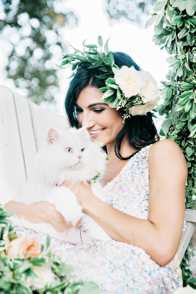 pretty white wedding cat