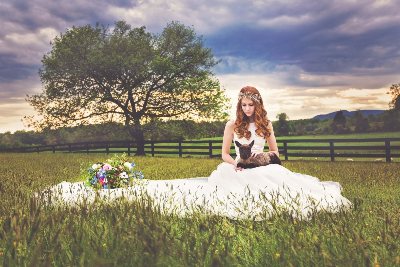 Inspiration Image from Tim Souza Photography