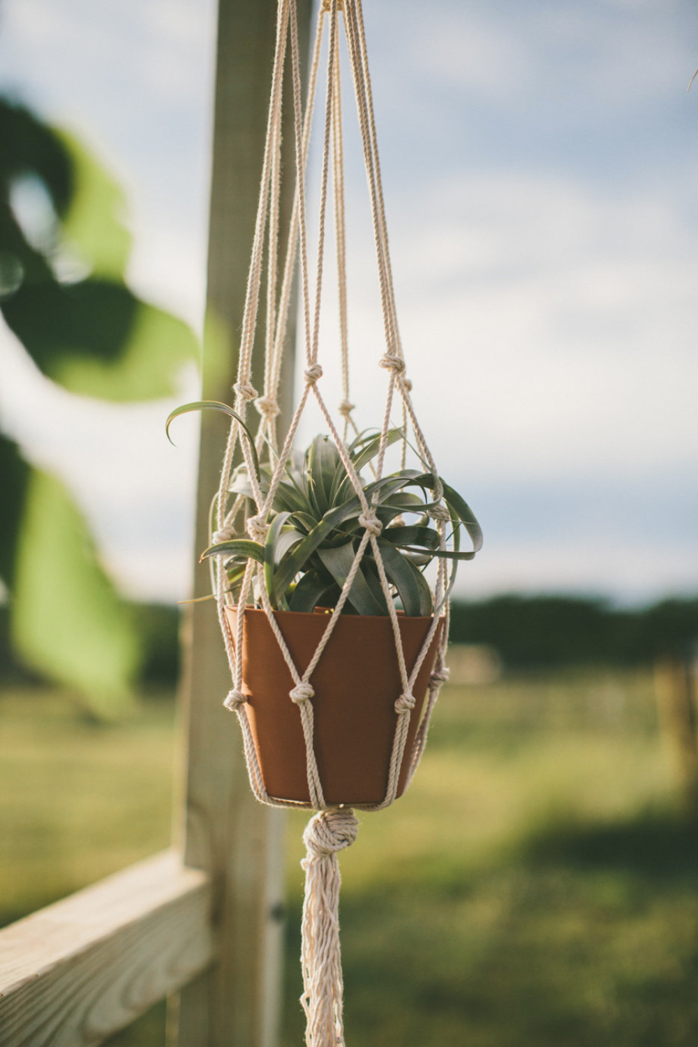 macrame plant hanging decor