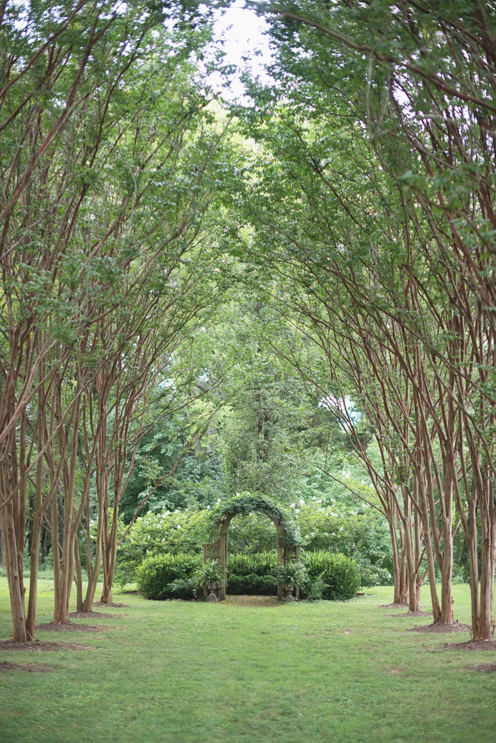 Gorgeous outdoor ceremony space