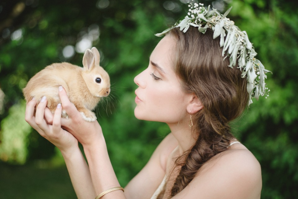 baby bunnies and the bride