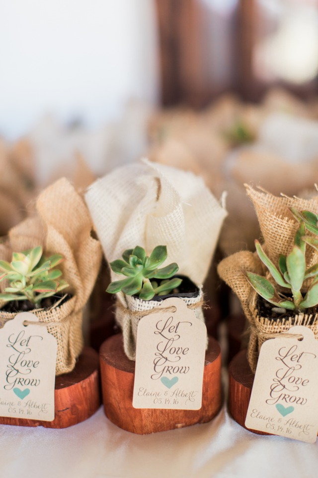 cute DIY potted succulent wedding favors