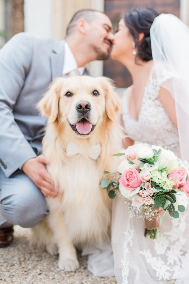 This wedding pup is so happy for his humans