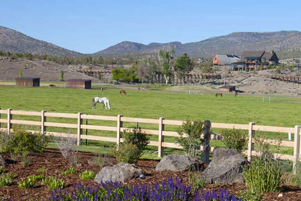Profile Image from Brasada Ranch