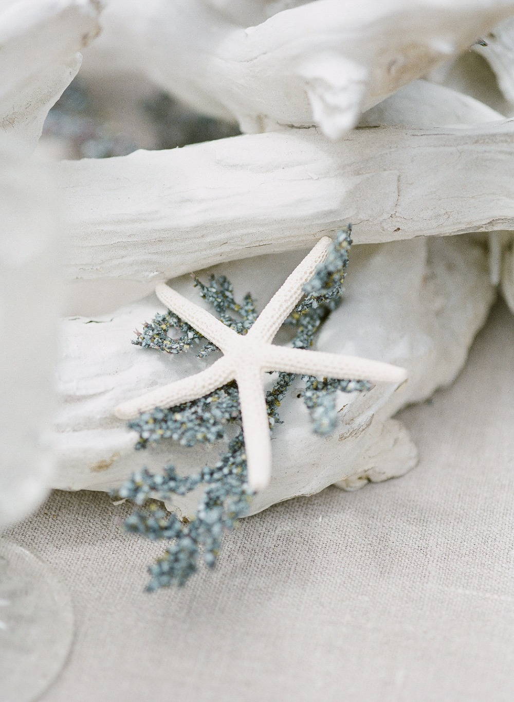 Star fish and beach wood table decor