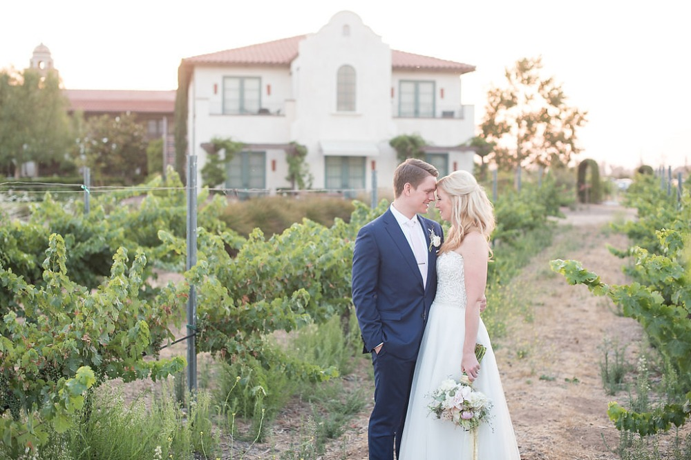 wedding photos amongst the grape vines at Ponte Winery