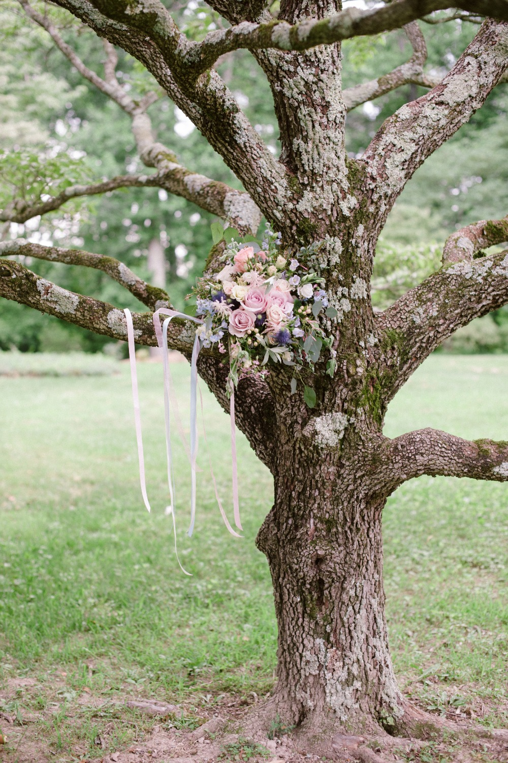 a bouquet in a tree