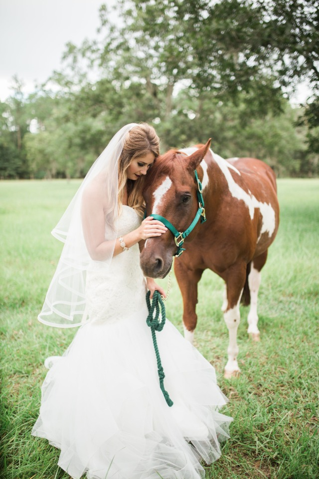 bride and wedding horse