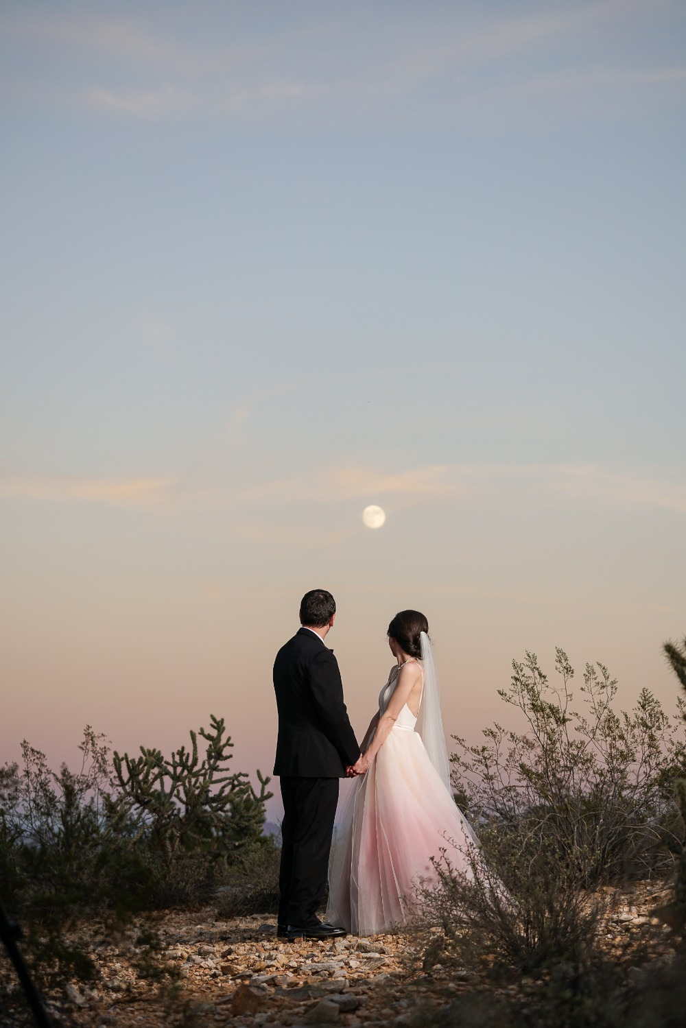 Beautiful desert moon wedding photo