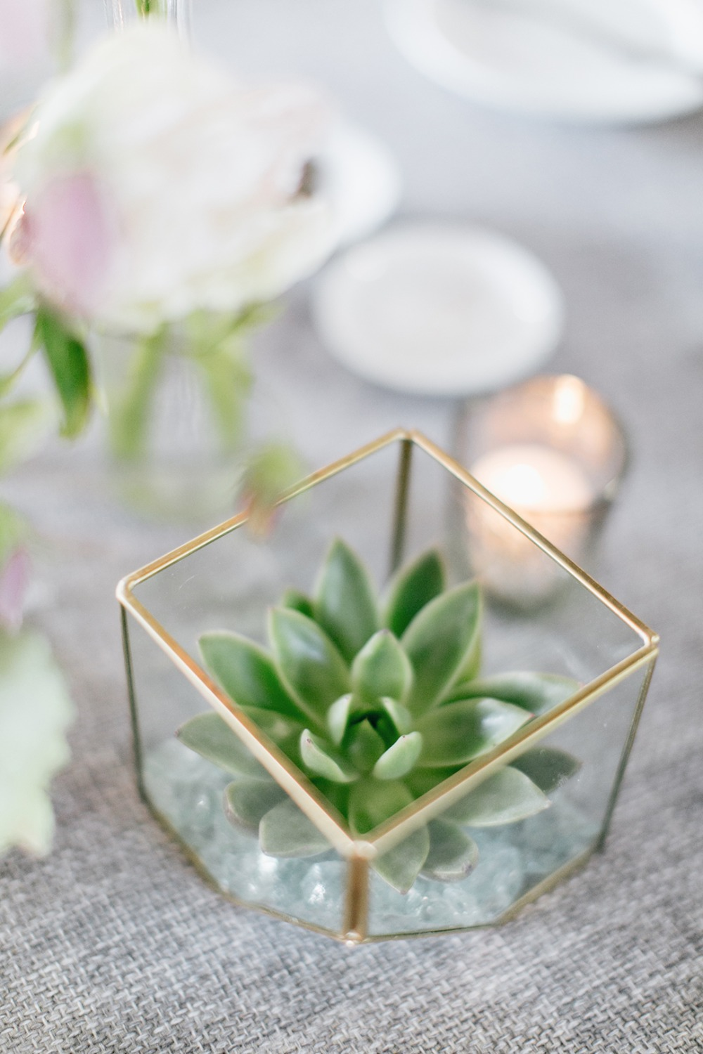 Small succulent centerpiece