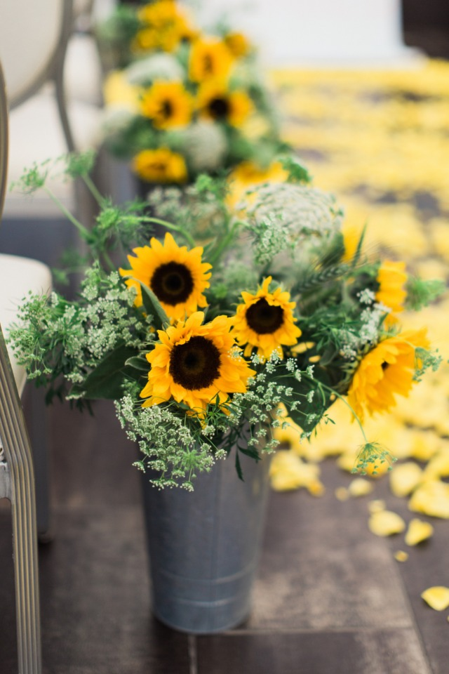sunflowers and queen annes lace aisle decor