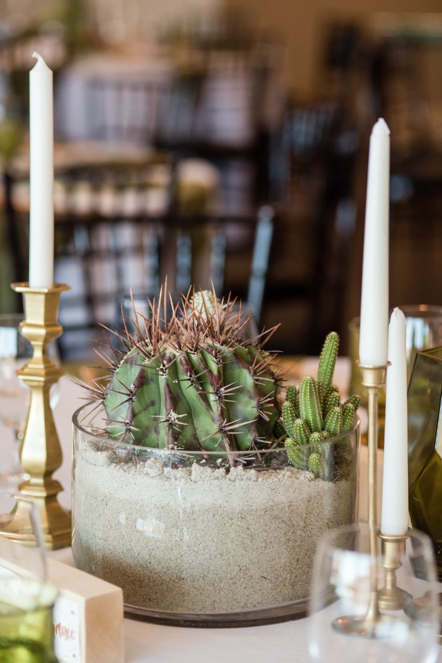 Cacti and sand centerpiece