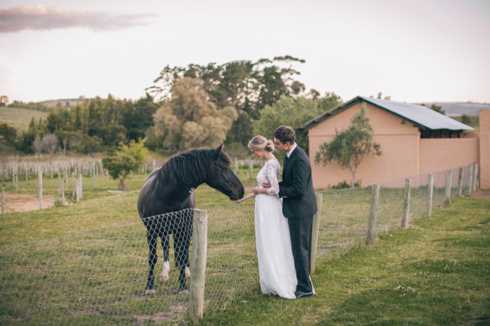 Galileo farm horses wedding venue