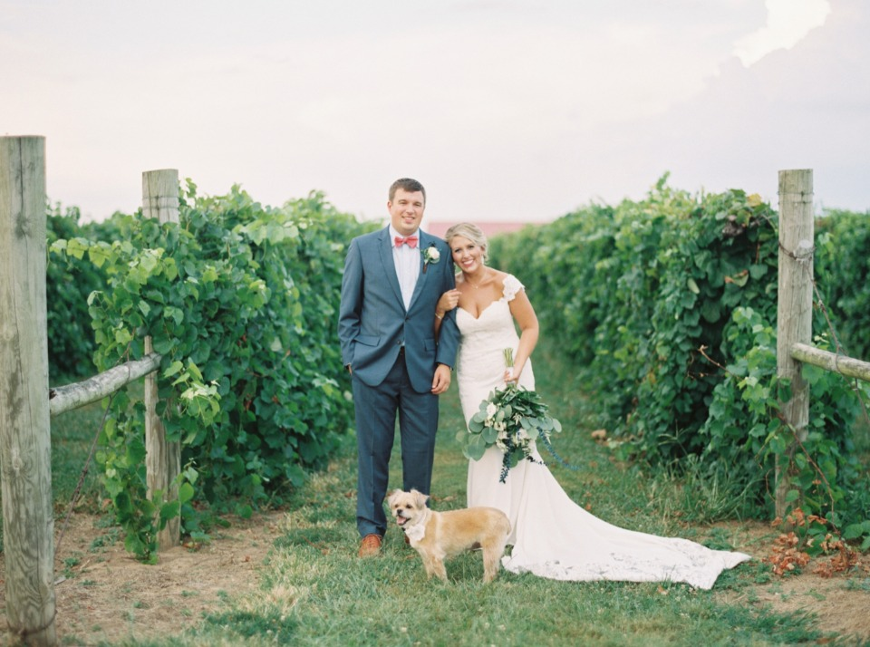 winery wedding couple and pup