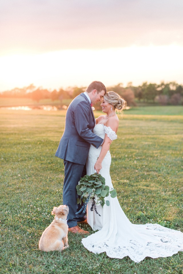 sunset bride and groom and pup photo