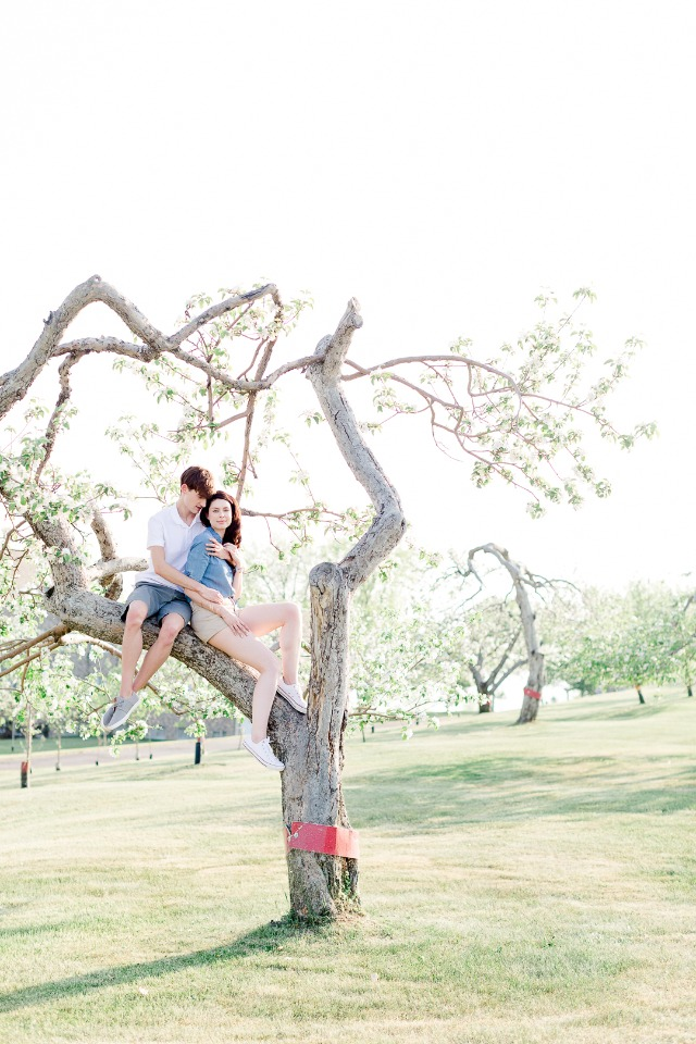 Surprise engagement in an orchard