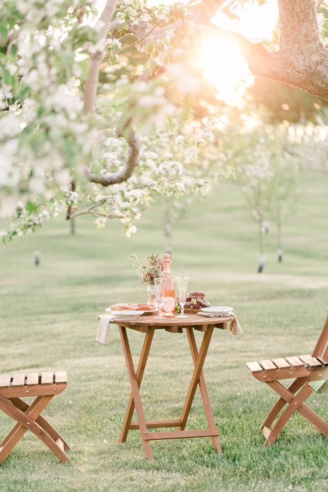 Cute outdoor lunch for two to celebrate the engagement