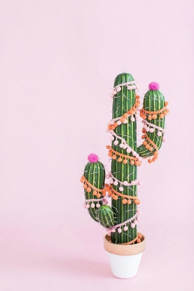 spicing up your desert holiday with a Christmas cactus