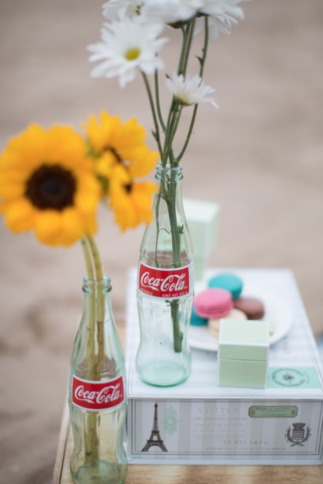 Engagement beach picnic idea