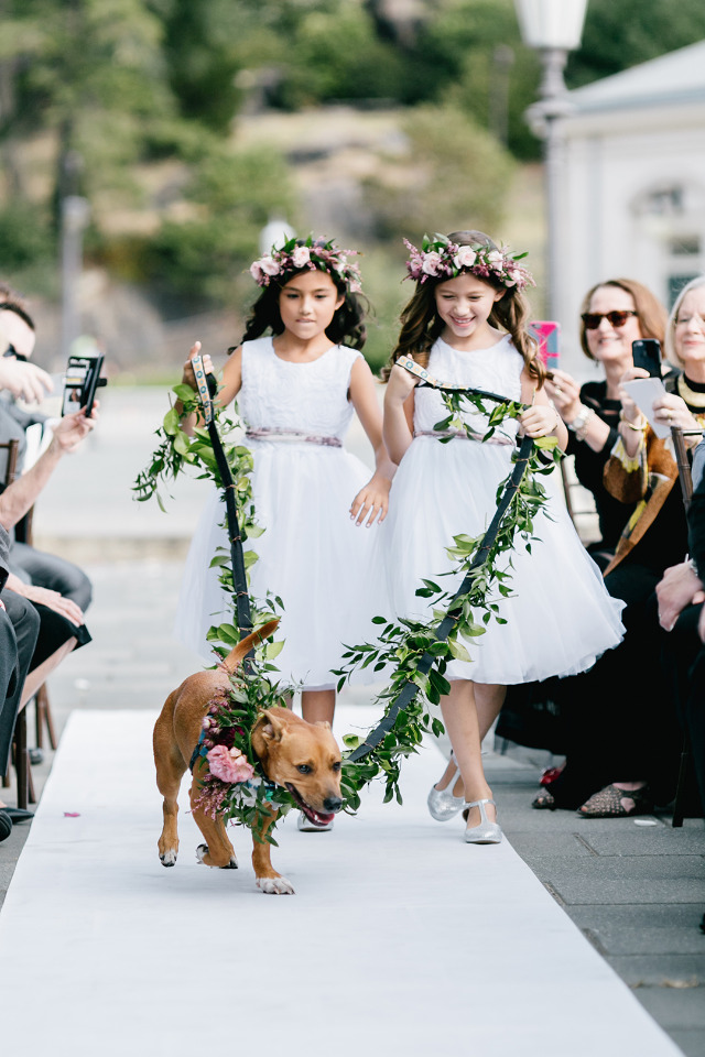 flower girls and dog ring bearer