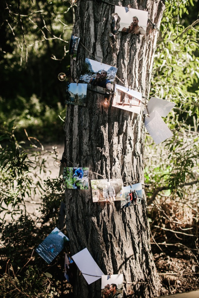 Wrap lights around a tree to hang photos from