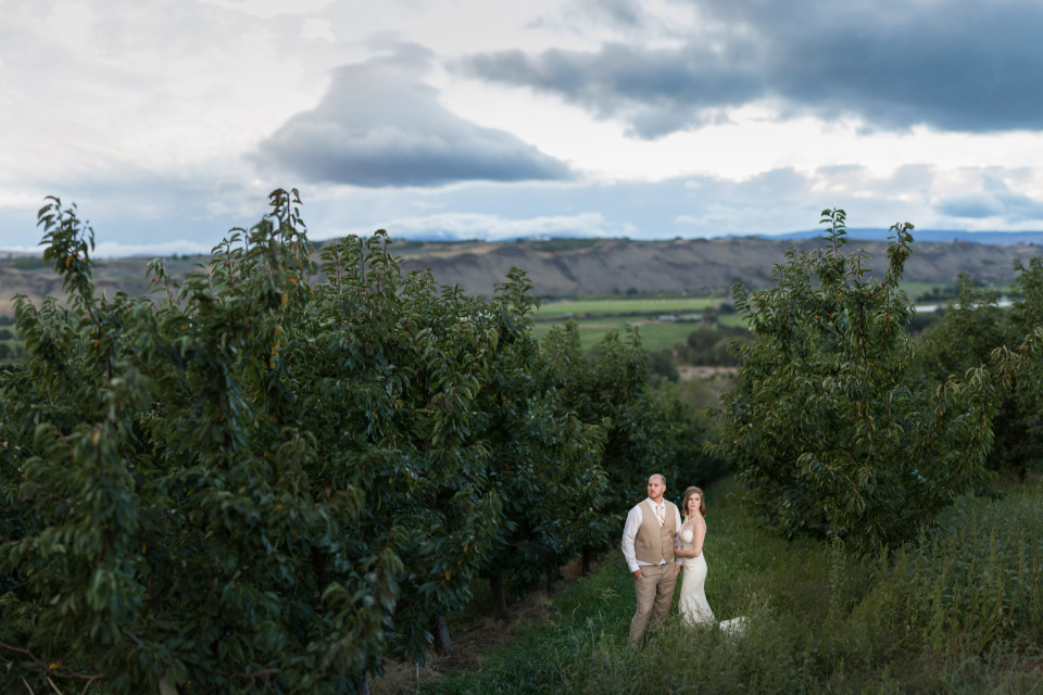 beautiful winery wedding venue