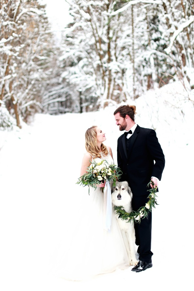 bride groom and dog in the snow
