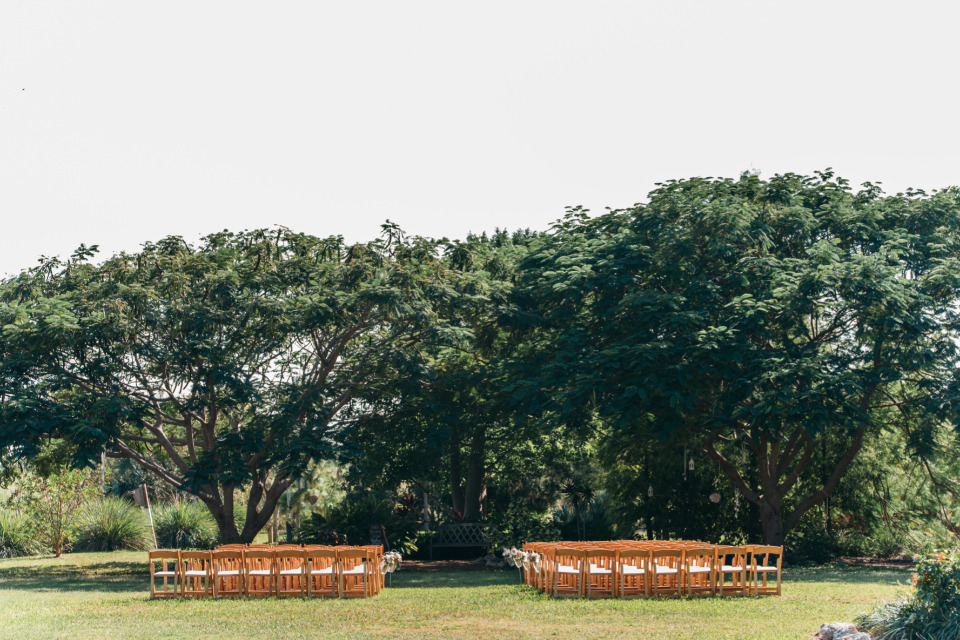 beautiful outdoor wedding ceremony with tree backdrop