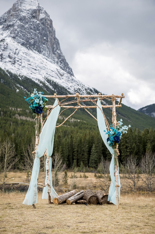 Chic birchwood arbor with blue ombre flowers