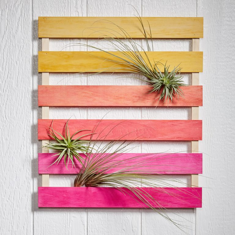 Ombre airplant mini pallet DIY from Fifty Flowers