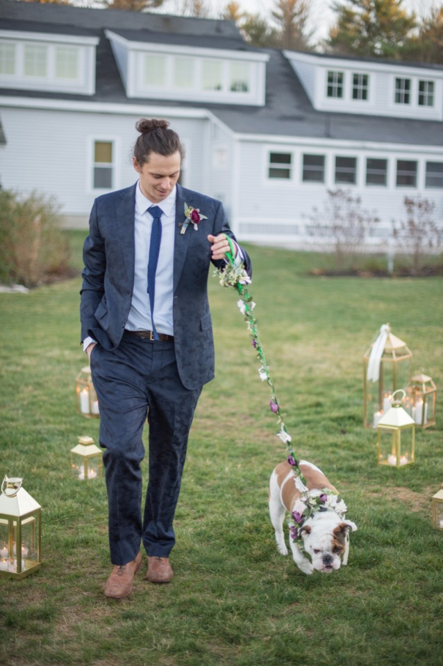 groom and flower dog