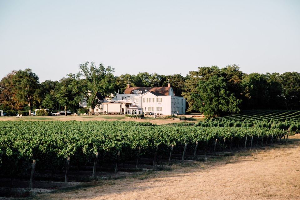 Vineyard venue