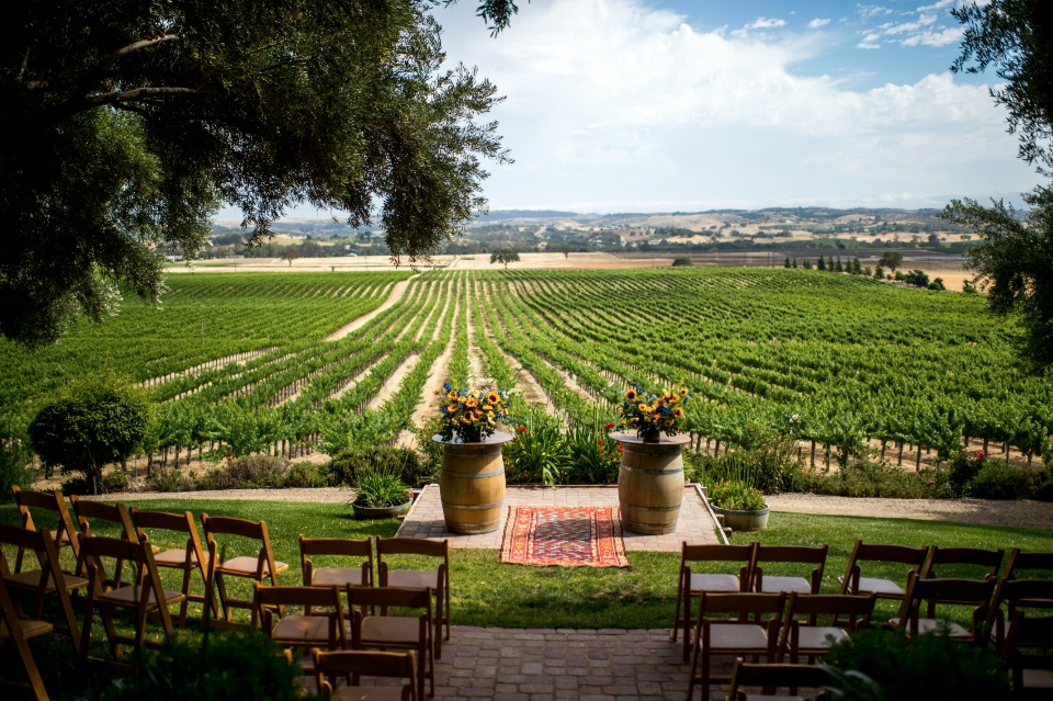 a ceremony with a vineyard view