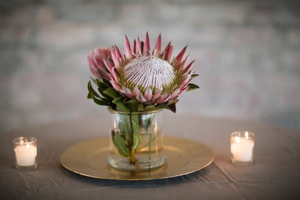 Stylish Modern Protea Filled Wedding
