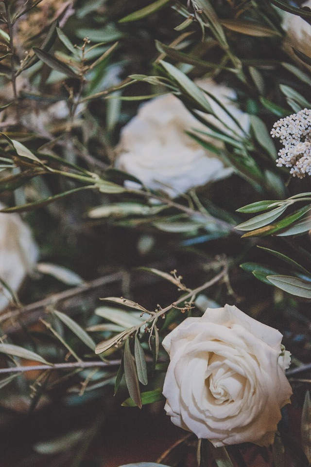 roses and olive branches