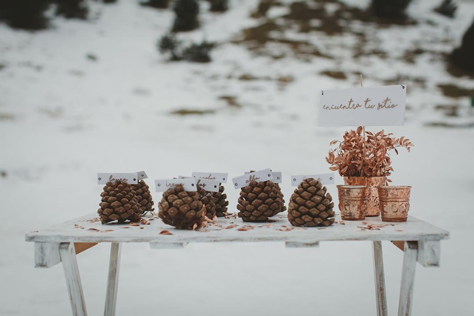 Pine cone escort card holders