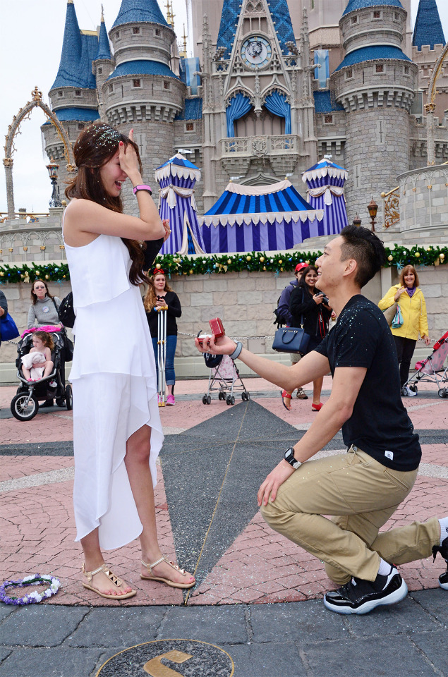 surprisedisneyproposal