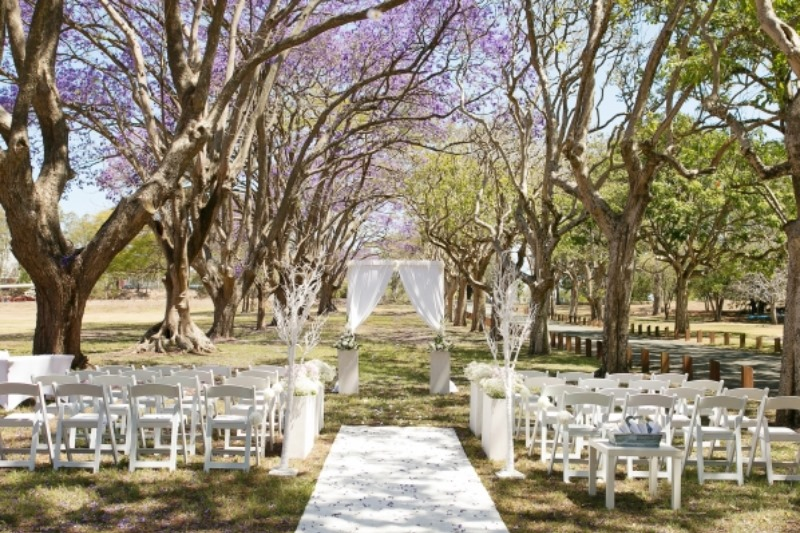 Stunning wedding ceremony set up by http://www.brisbaneweddingdecorators.com.au between two rows of blooming jacaranda trees