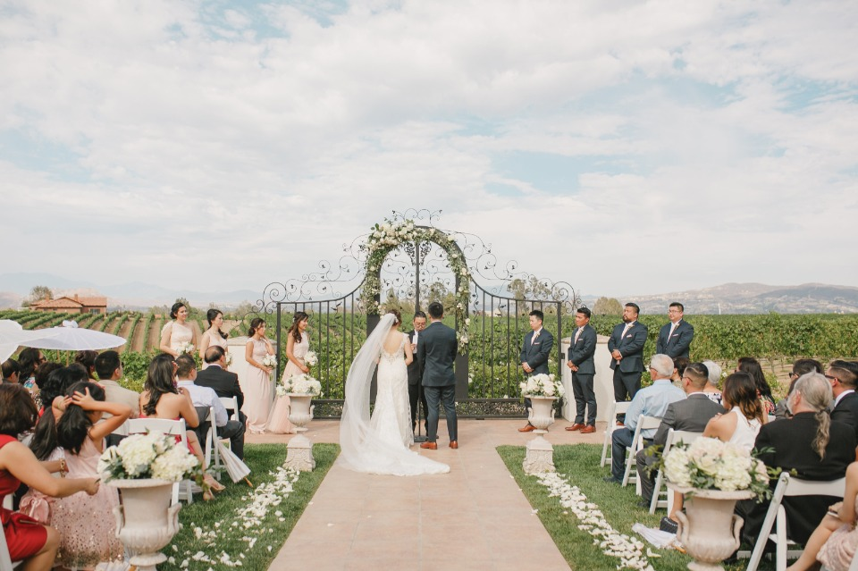Dreamy vineyard wedding