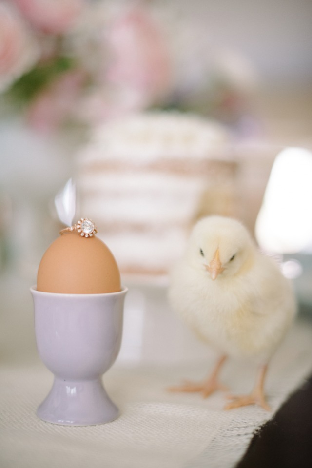 Pretty engagement ring and cute chick