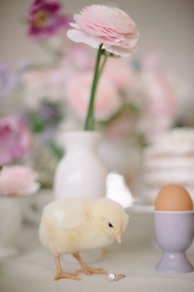 Easter chick and engagement ring